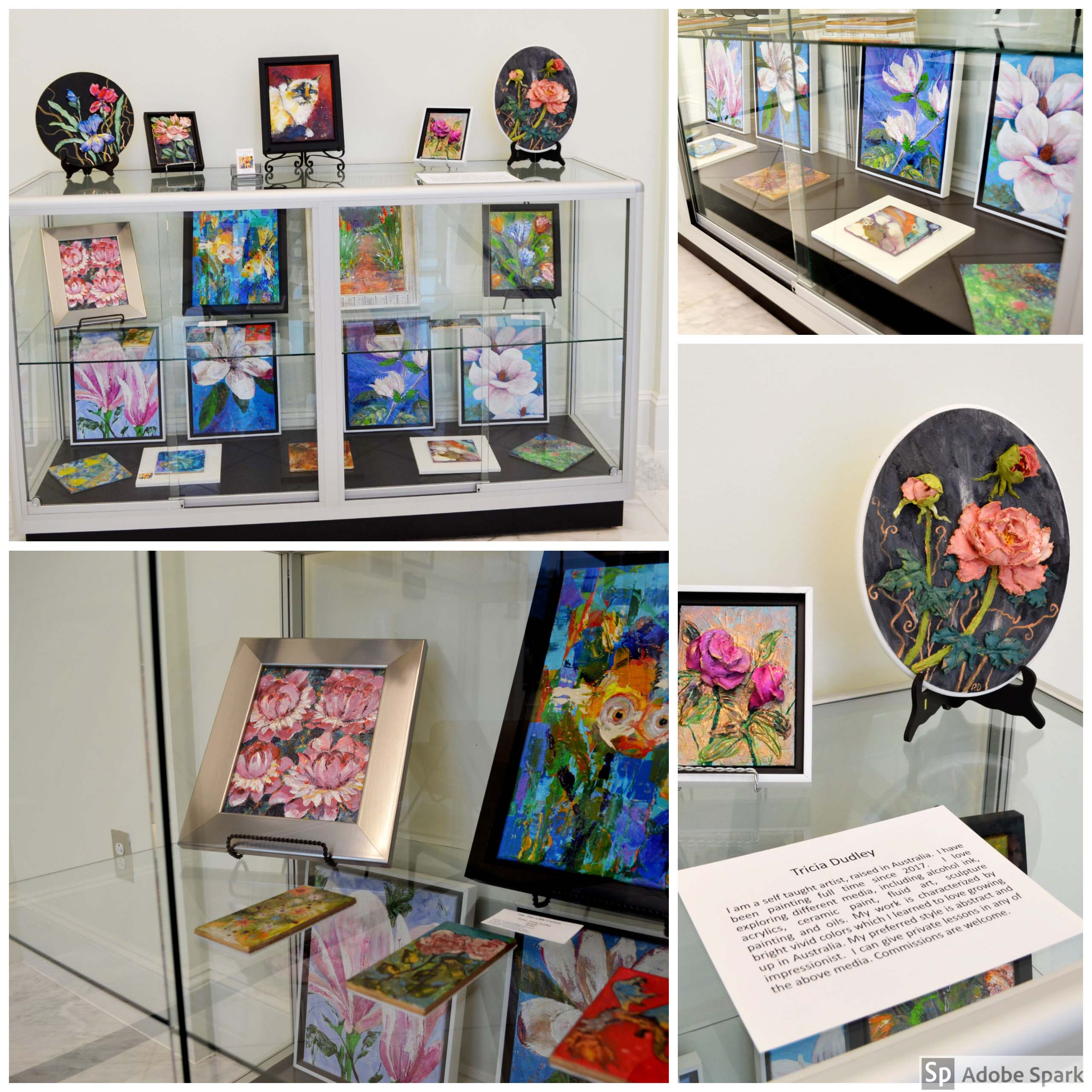 Tricia Dudley Art Display